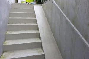 Die Kellertreppe ist zum größten teil von Algen und Moose befreit.